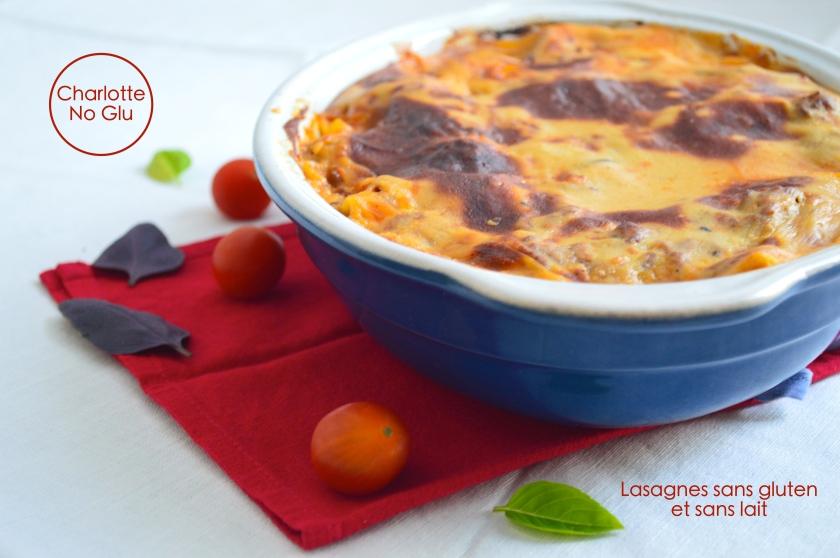 lasagnes sans gluten sans lactose - gluten and dairy free lasagna
