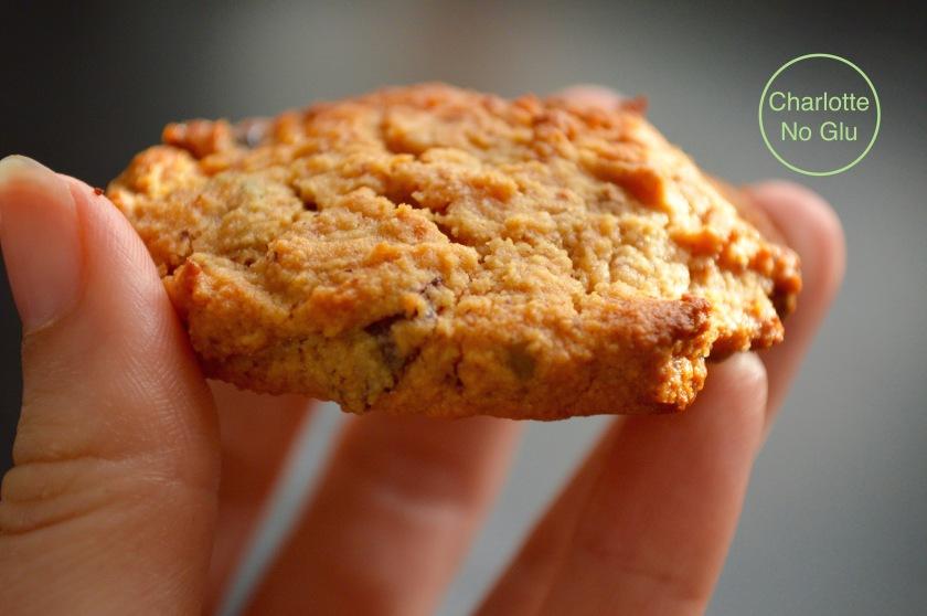 cookies_amande_cranberry_pistaches_charlottenoglu_sansgluten_glutenfree_1