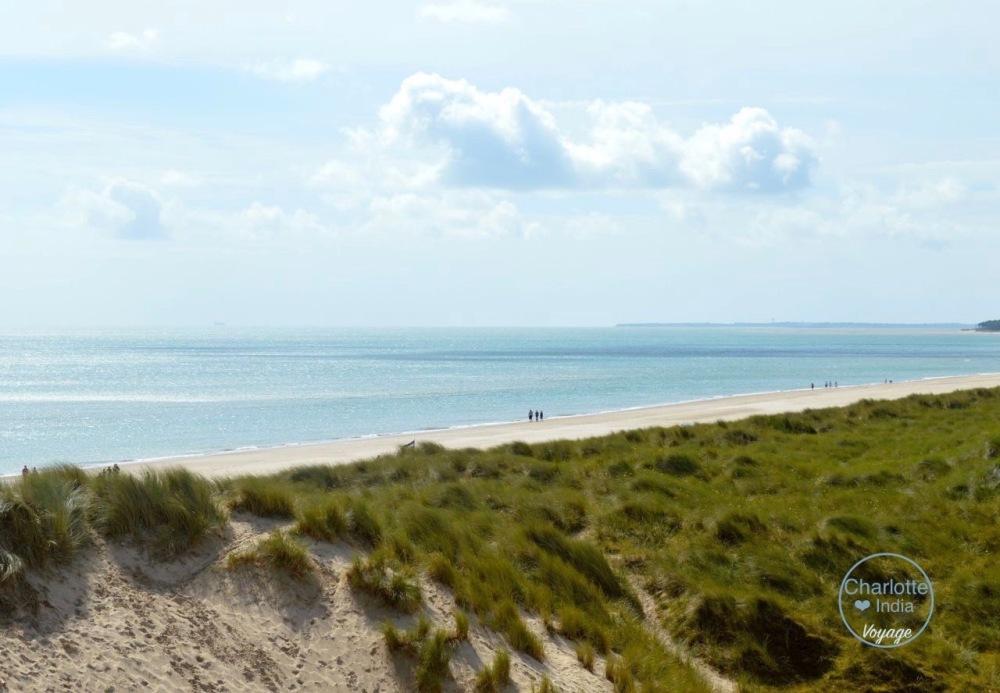 curracloe_beach_charlotteindia_voyage (1)